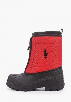Дутики Polo Ralph Lauren. Цвет: красный