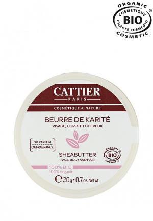 Масло массажное Cattier