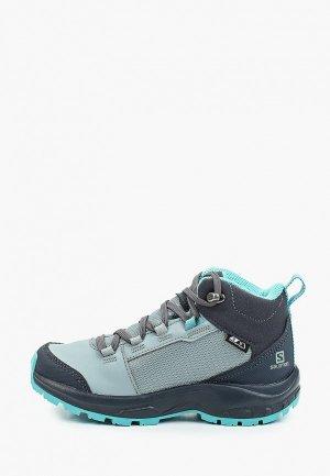Ботинки трекинговые Salomon. Цвет: голубой