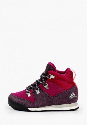 Ботинки трекинговые adidas. Цвет: бордовый
