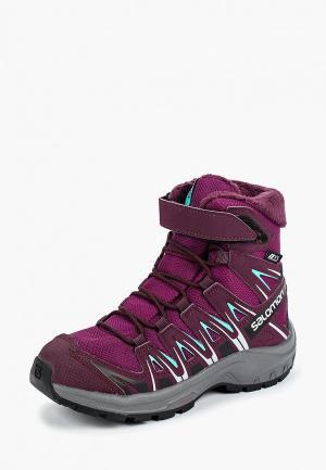 Ботинки трекинговые Salomon. Цвет: фиолетовый