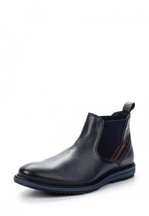Ботинки Baerchi. Цвет: синий