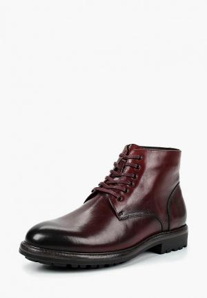 Ботинки Calipso. Цвет: бордовый