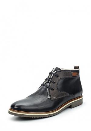 Ботинки Lloyd. Цвет: черный