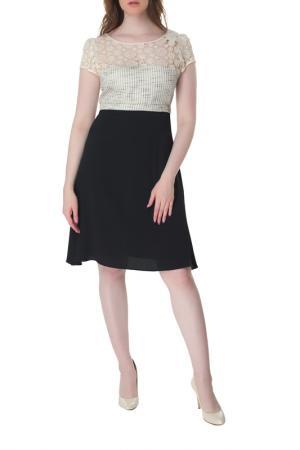 Платье AXARA. Цвет: черный