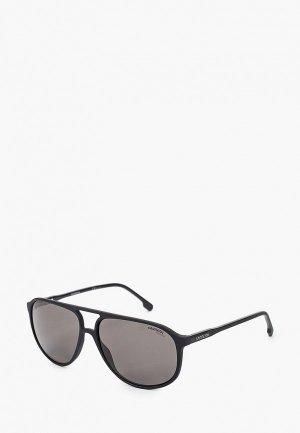 Очки солнцезащитные Carrera. Цвет: черный