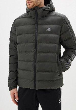 Куртка утепленная adidas. Цвет: хаки