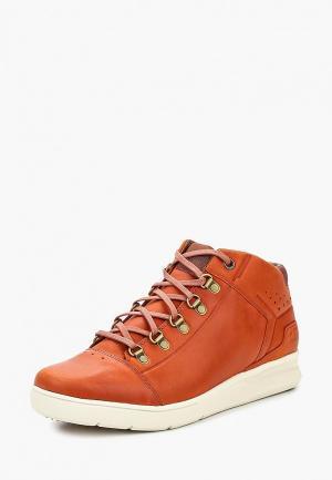 Ботинки Caterpillar. Цвет: оранжевый