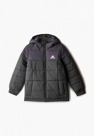 Куртка утепленная adidas. Цвет: зеленый